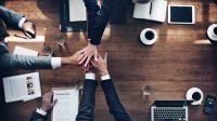 Marketing ügynökségi együttműködés